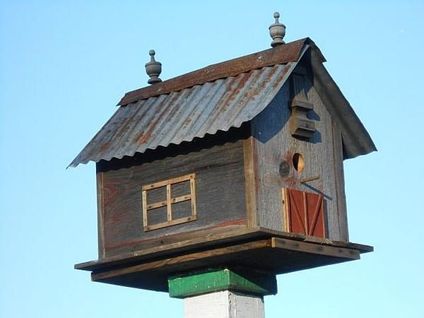 KPG Bird House 2.jpg (600×450)