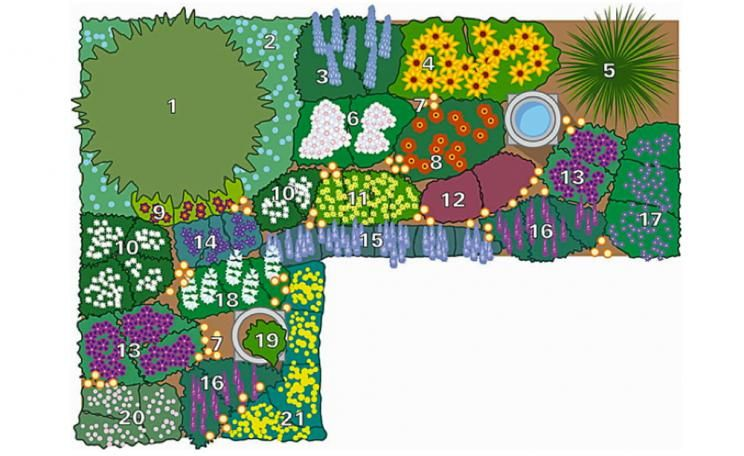 Stunning Bepflanzungsplan