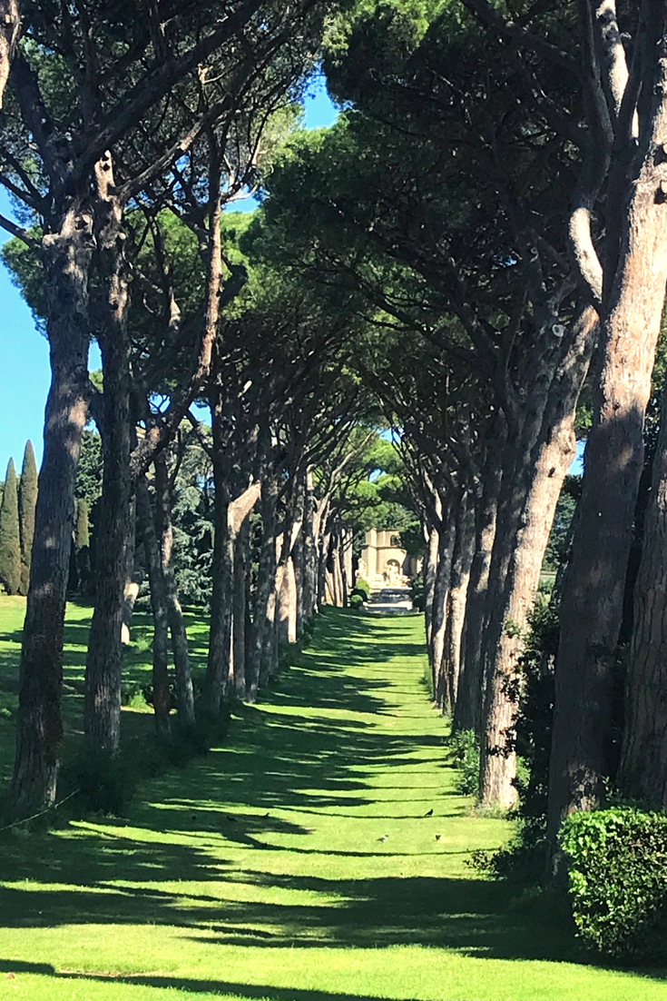 42f6b2d4b4fffafe4a8cb1f911cb285d - Barberini Gardens Of The Pontifical Villas