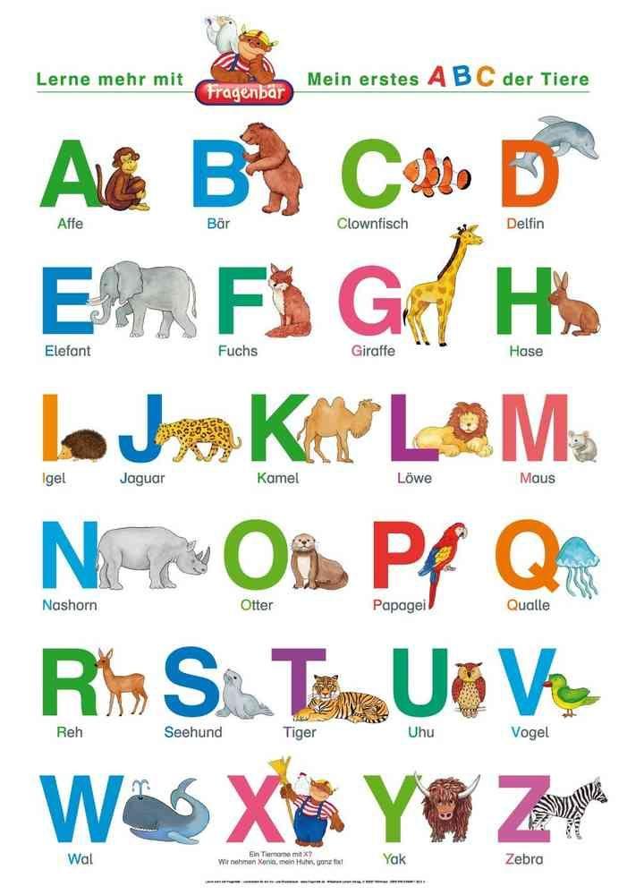 Mein Erstes Abc Der Tiere Abc Lernen Abc Der Tiere Und Das Abc