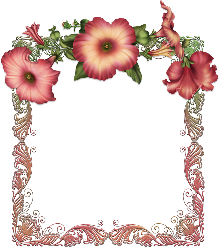 red transparent frame with red flowers