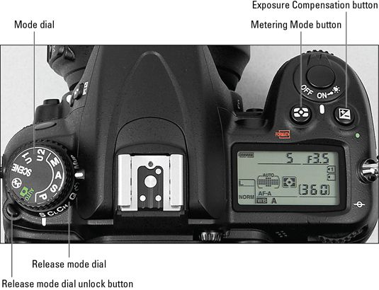 Nikon D7000 Manual For Ipad