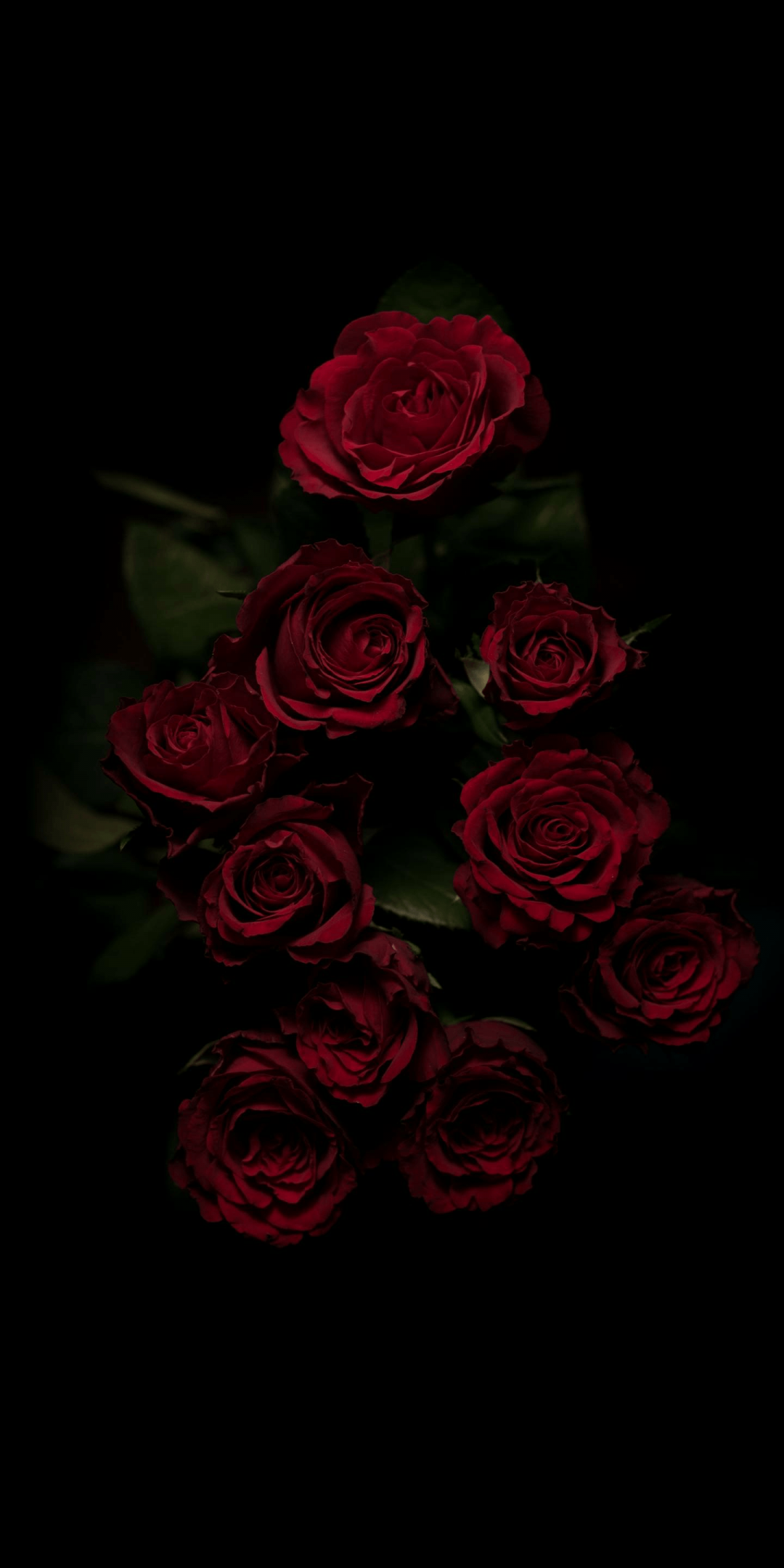 Flower Aesthetic Android Iphone Desktop Hd Backgrounds Wallpapers 1080p 4k Rose Wallpaper Red Roses Wallpaper Flowers Black Background