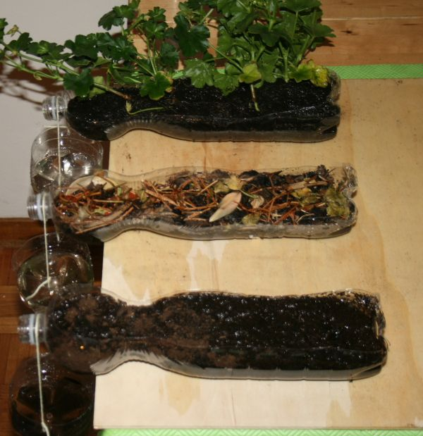 Science Experiment On Soil Erosion In English La Pappadolce