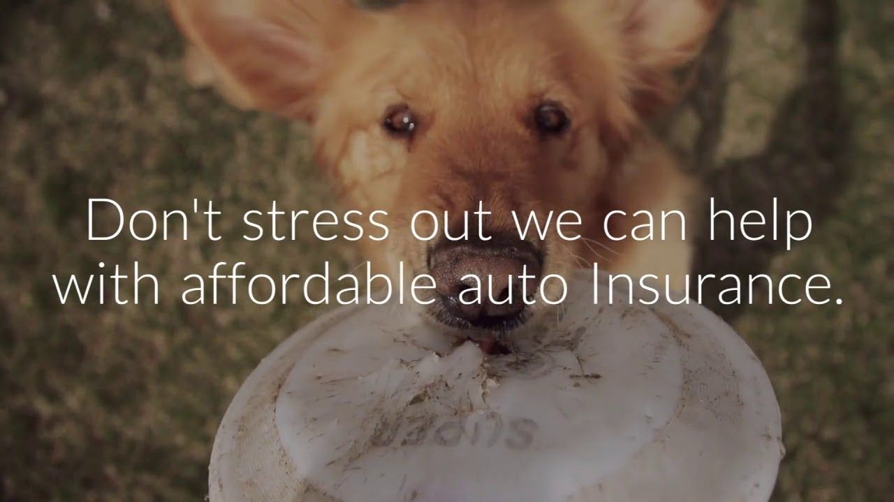 Affordable auto insurance columbia sc car insurance