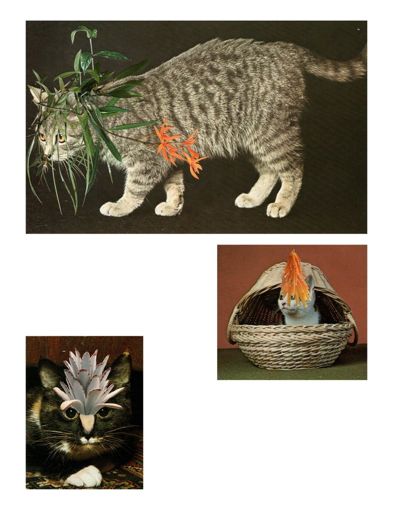 Three Hunters Hand cut collage 2010