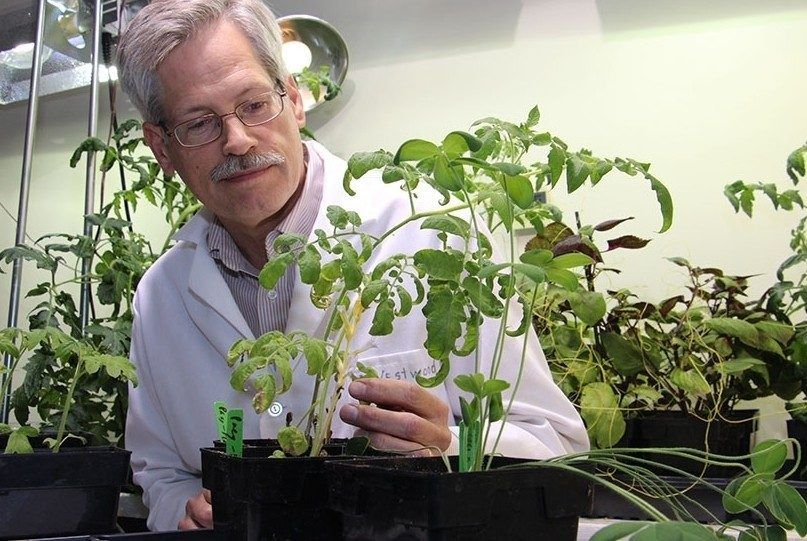 Jim Westwood Receives Fulbright U S Scholar Award To France For Parasitic Plant Research Fulbright Program Global Education Life Science
