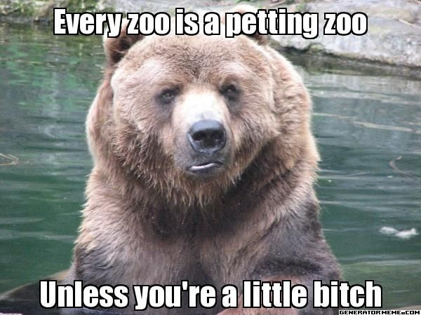 Thats a pretty accurate description of my usual zoo-behaviour...xD