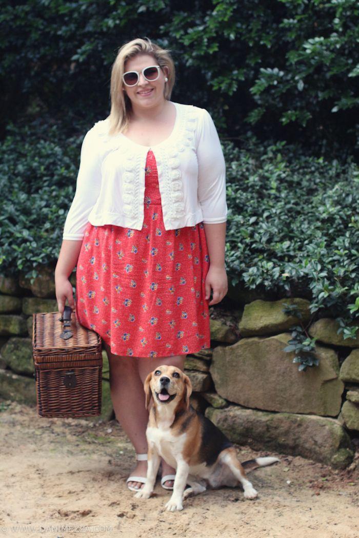 danimezza aussie curves plus size fashion ootd picnic red dress white beagle-5