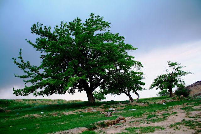 Yakhab-Kashan-Iran