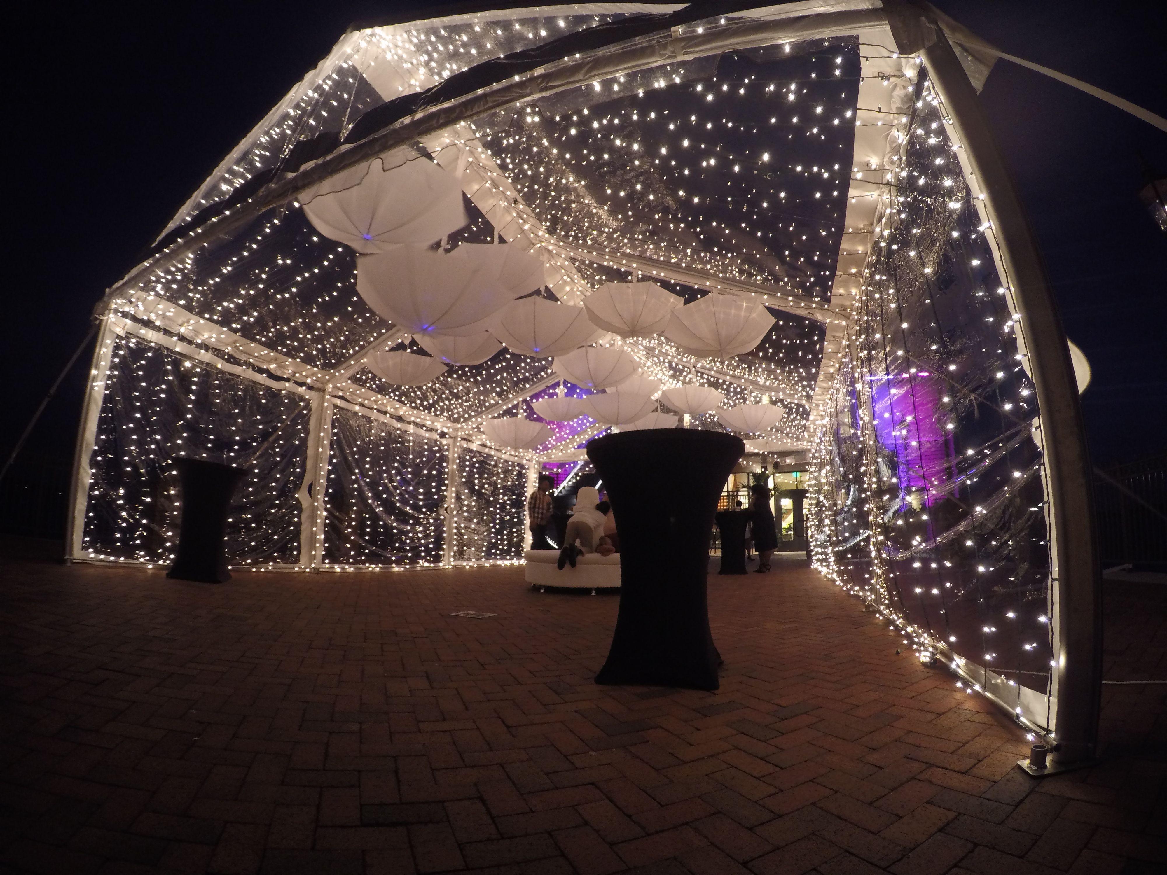 Tent Lighting Party tent wedding, Party tent rentals