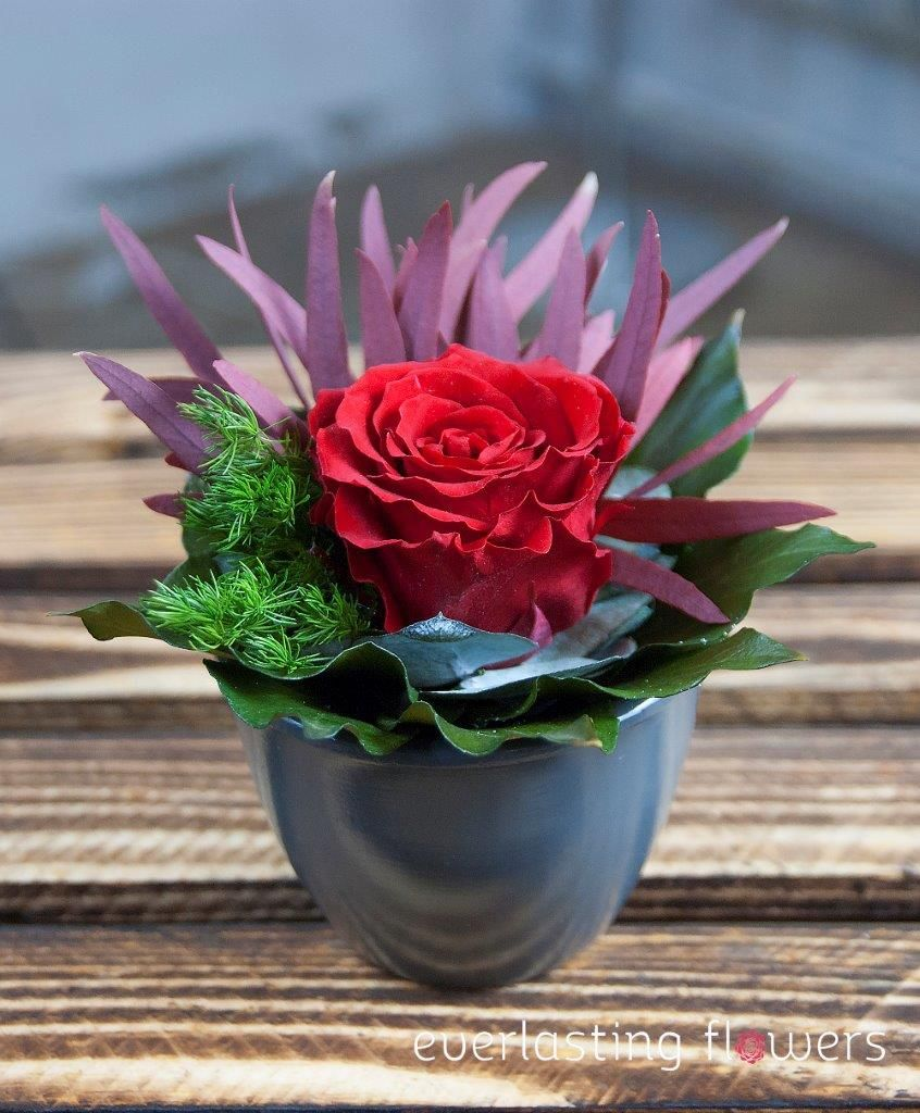 Kwiaty W Pudlku Dekoracja Wykonana Z Kwiatow Stabilizowanych Kompozycja Wykonana W Ceramice Pakowane W Pudelko Transparentne K Plants Flower Boxes Flowers