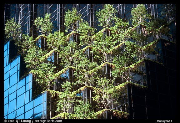 Hanging gardens trump tower nyc new york usa for Hanging garden designs