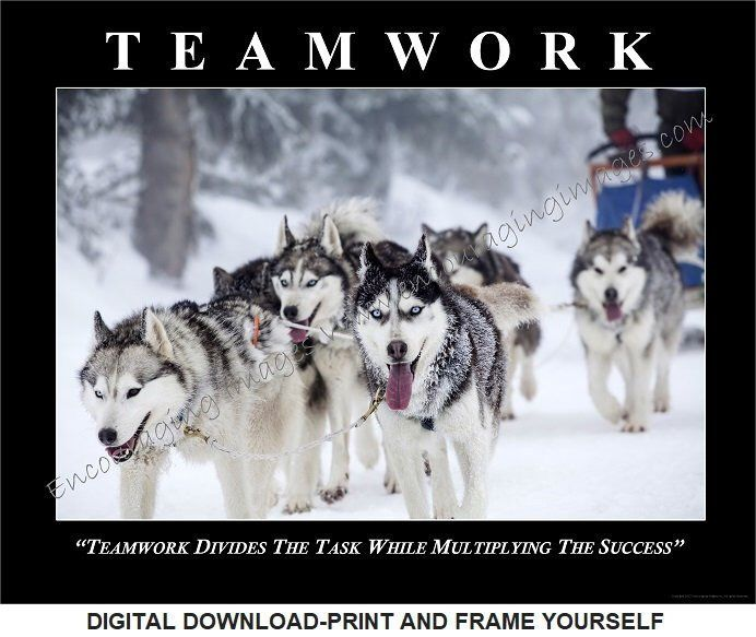 Download Motivational Poster Teamwork Iditarod Sled Team Dog Sled