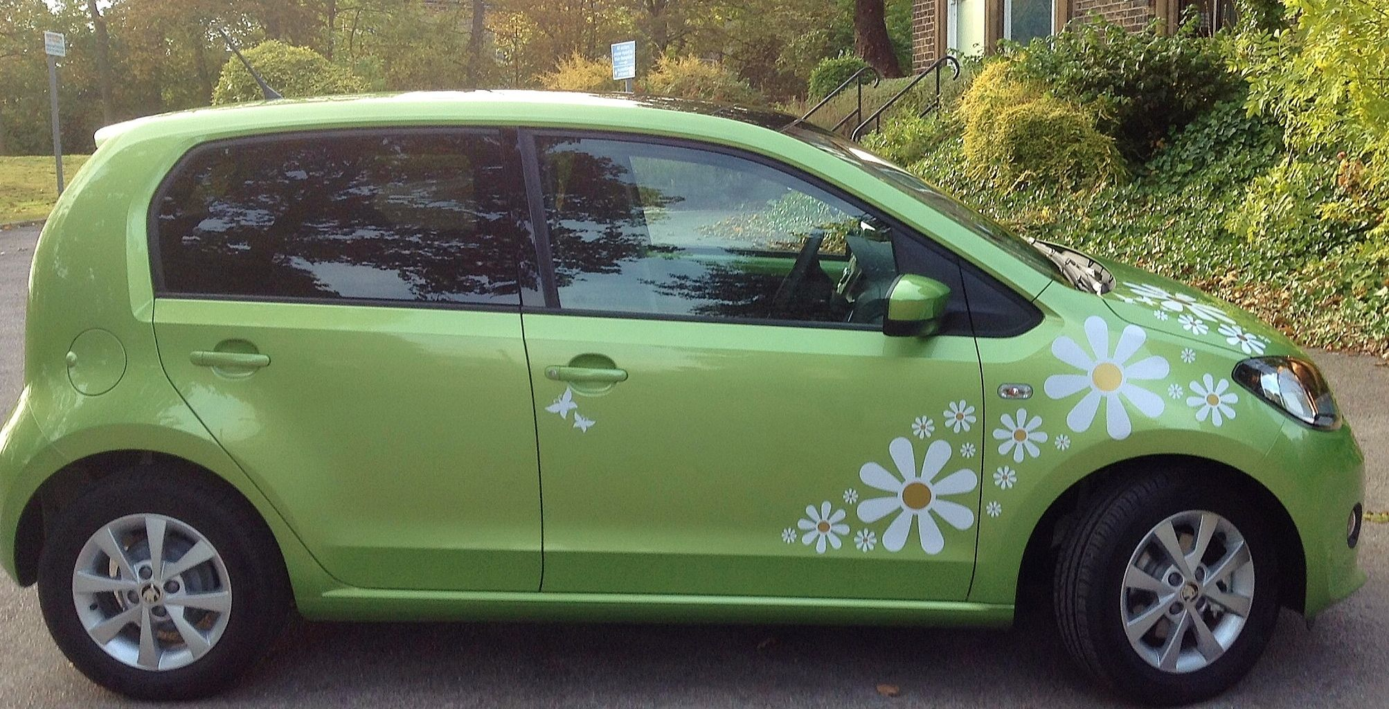 Completely Crazy Daisy Car Stickers Wish Buy List Pinterest - Custom vinyl stickers for cars