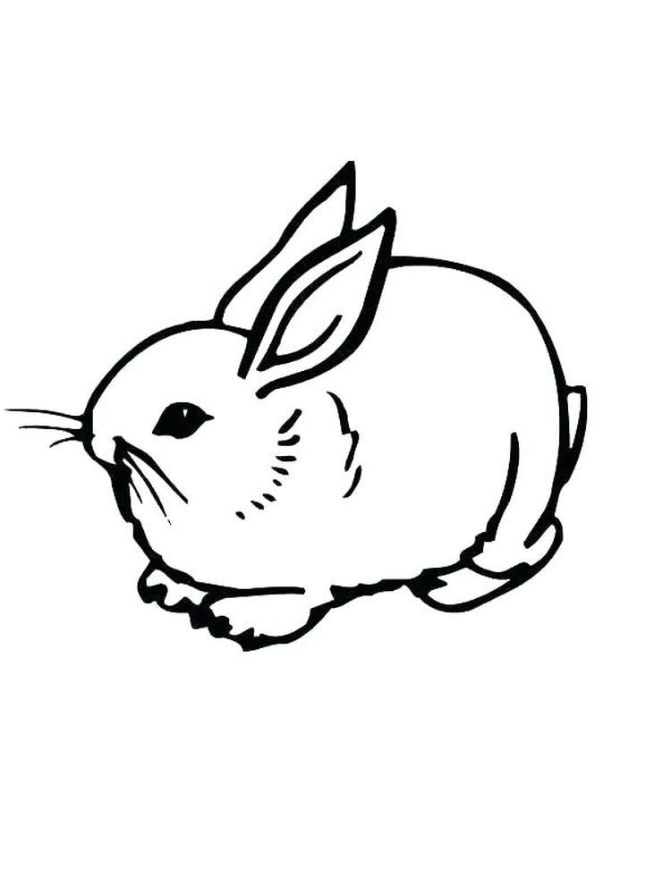 Rabbit Coloring Pages For Preschoolers Rabbits Are Small Mammals With Short Smooth Distinctive Bunny Coloring Pages Owl Coloring Pages Animal Coloring Pages