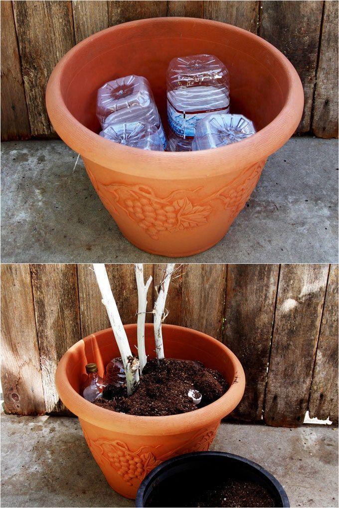 DIY Fall & Thanksgiving Decorations Planter {So Easy ...