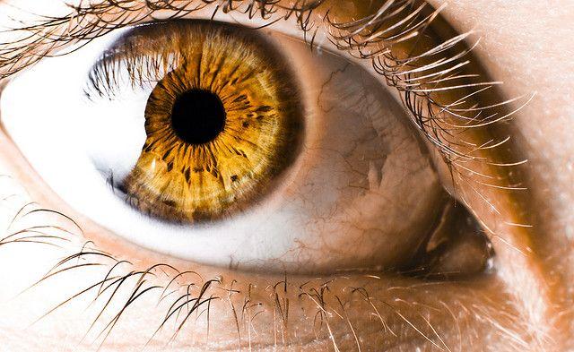 Image result for amber eyes close up