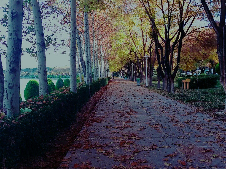 The beautiful autumn in esfahan