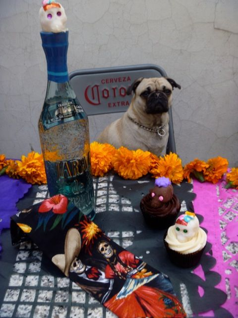 Hungry? Paola's dog drooling for a Day of the Dead apron from San Miguel Designs...and a bottle of mezcal for the topper.
