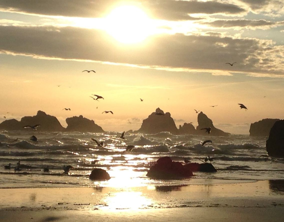 """""""Its just an IPhone I know but the light and movement on the water was a symphony of tranquil peaceful life here in Bandon."""" Tracy Anderson Bandon, OR  April 2016"""