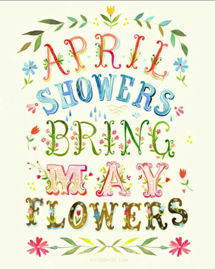 April Showers Bring May Flowers April showers, May