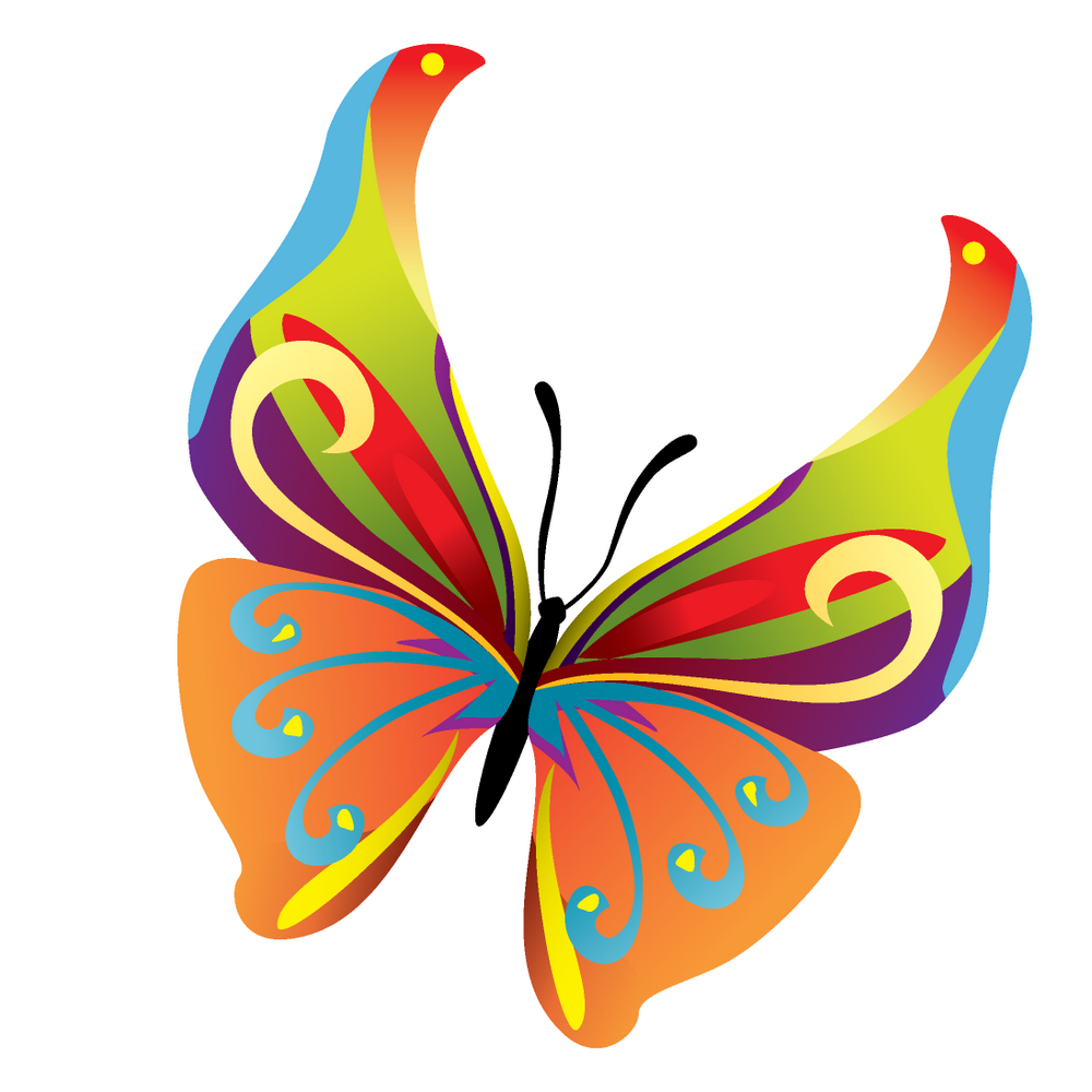 vector butterfly 07 by dragonartpng 10002151000 pixels