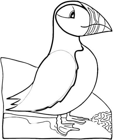 Bird Puffin Coloring Page Bird Embroidery Pattern Bird Coloring