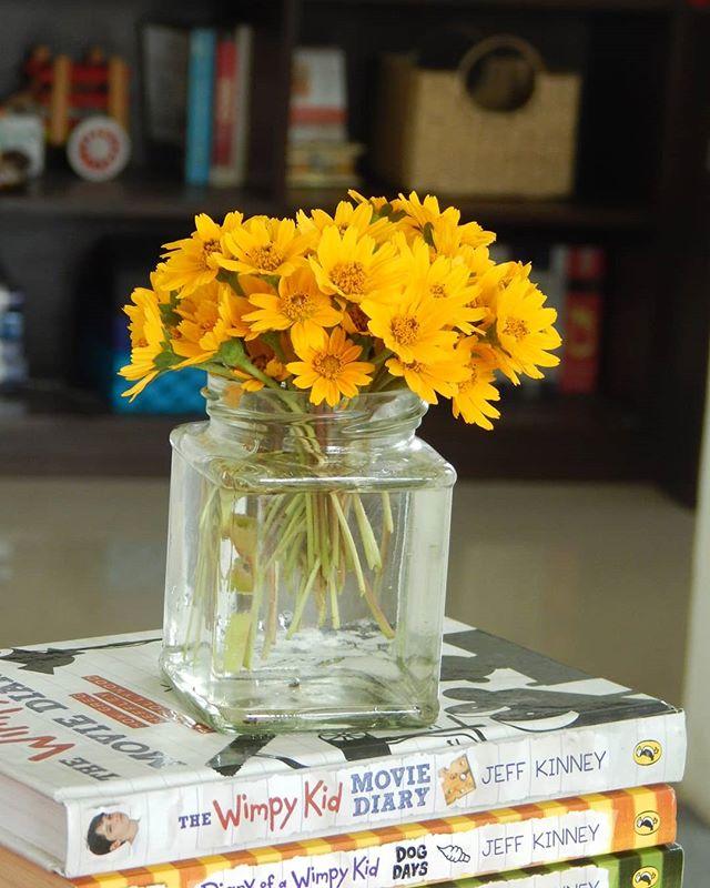 Vasudha Somayaji Vasudhasomayaji Flower Arrangements Wimpy Kid Kid Movies