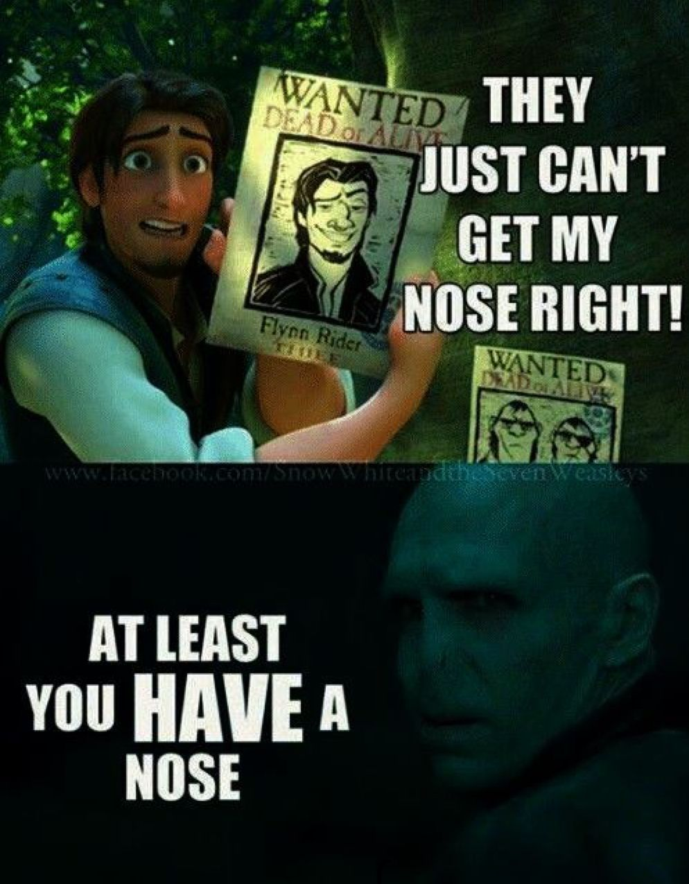Voldemort Isn T Such A Bad Guy And Other Links Harry Potter Valentines Harry Potter Funny Harry Potter Memes Hilarious