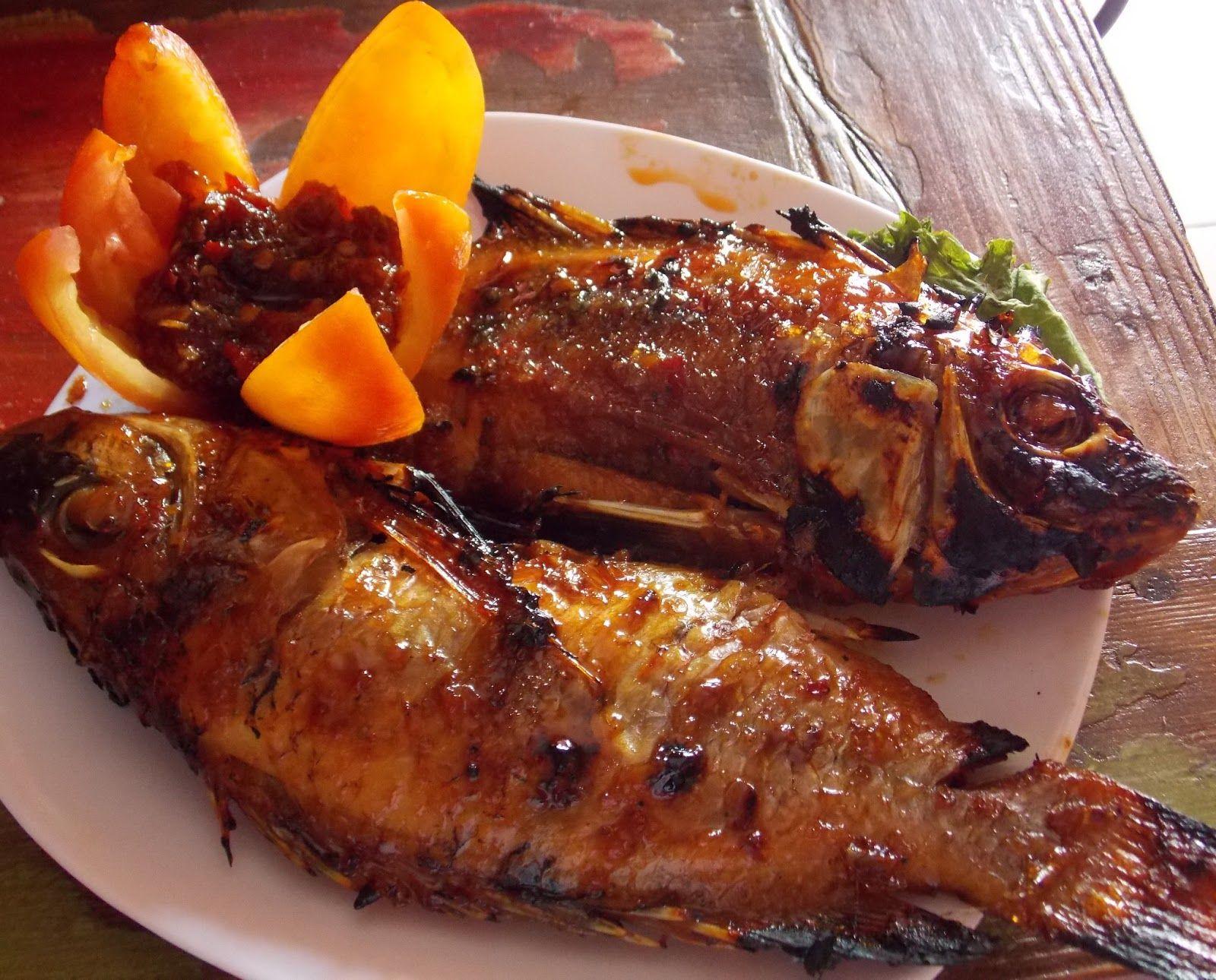 Resep Ikan Kakap Bakar Kecap Manis Enak Spesial Resep Ikan Kakap Bakar Kecap Manis Enak Spesial Ikan Laut Khususnya Ika Resep Ikan Resep Ikan Bakar Saus Ikan