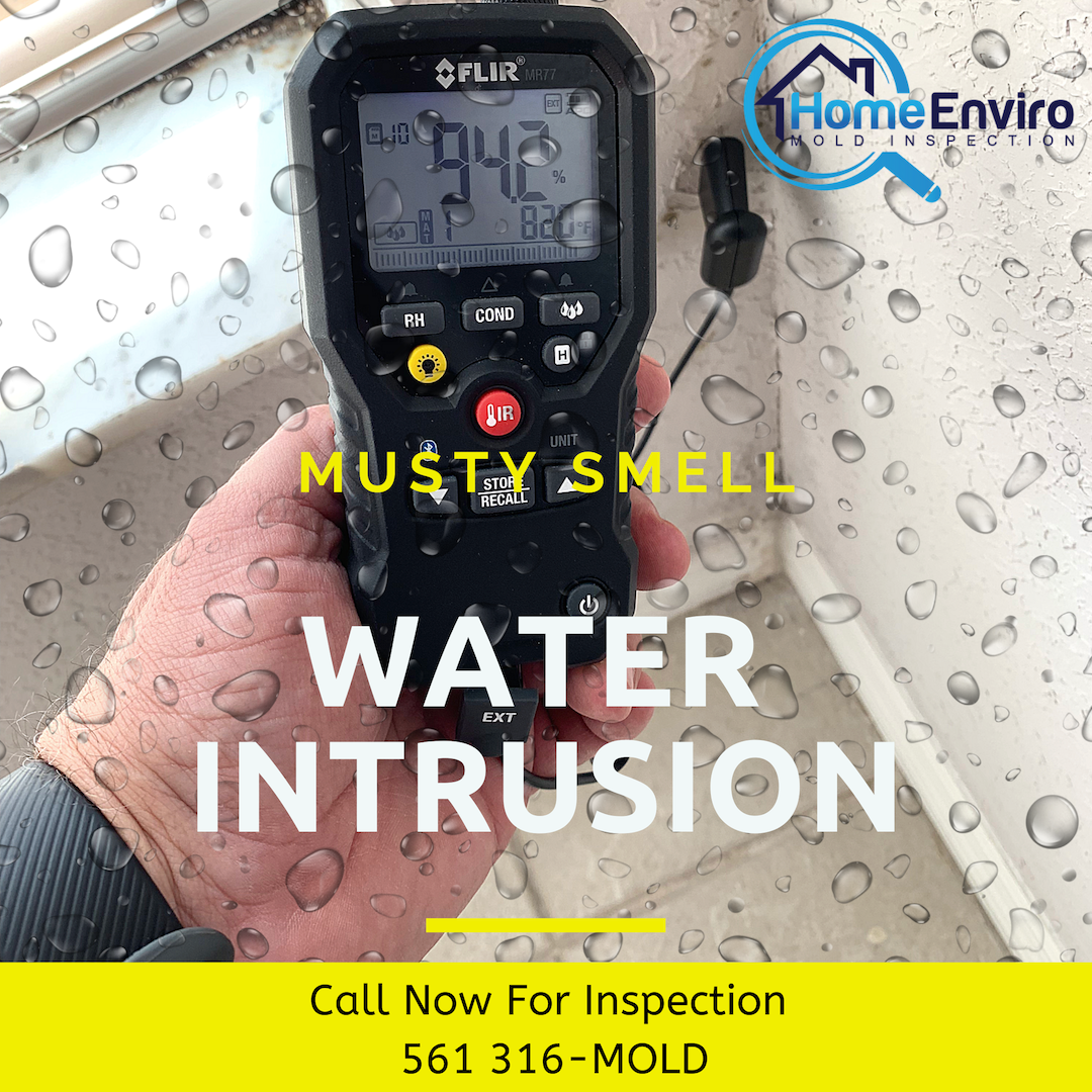Any building or home can suffer from water intrusion