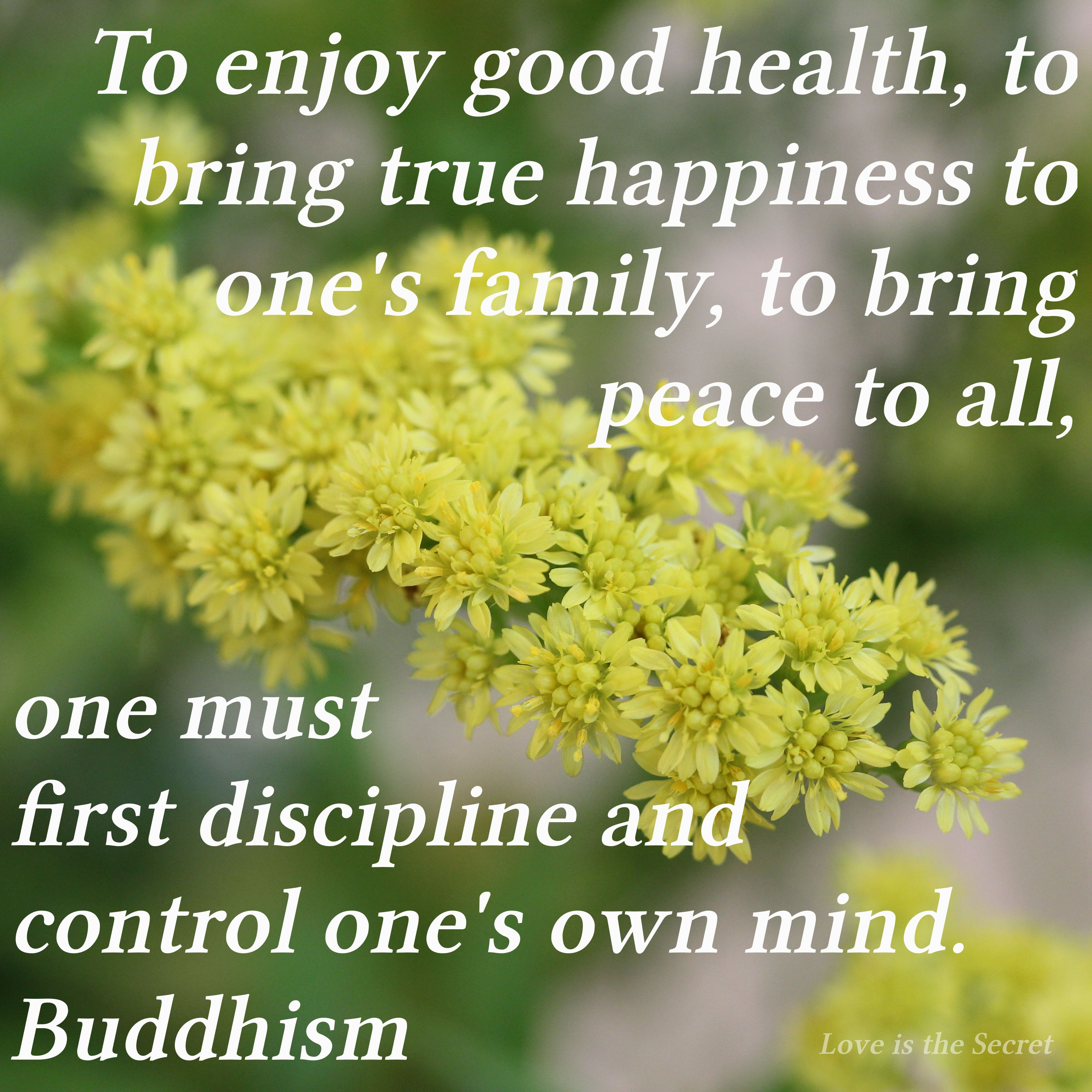 Buddha Family Quotes: Pin By Love Is The Secret On Buddhism