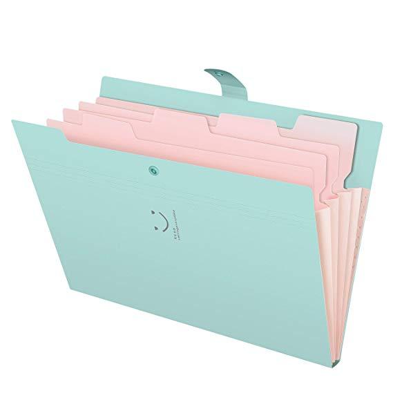 Amazon Com Skydue Letter A4 Paper Expanding File Folder Pockets Accordion Document Organizer Jad Documents Organization Accordion Folder Folder Organization