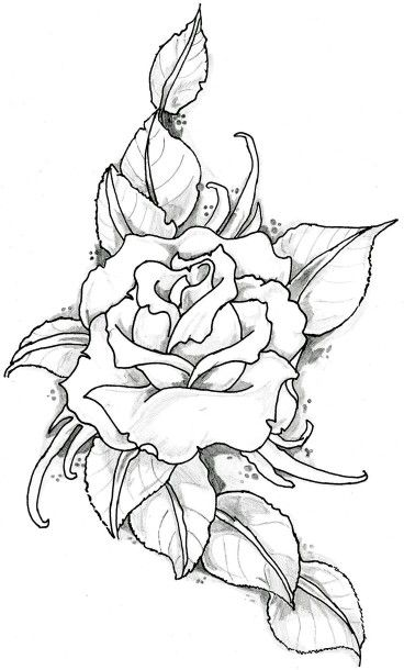 Pin By Umut On Motives Drawings Coloring Pages Coloring Books