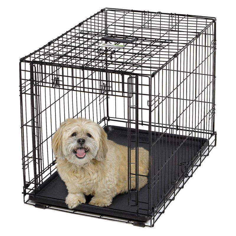 Midwest Ovation Single Door Dog Crate 19 Dog Crate Sizes Dog Crate Portable Dog Crate