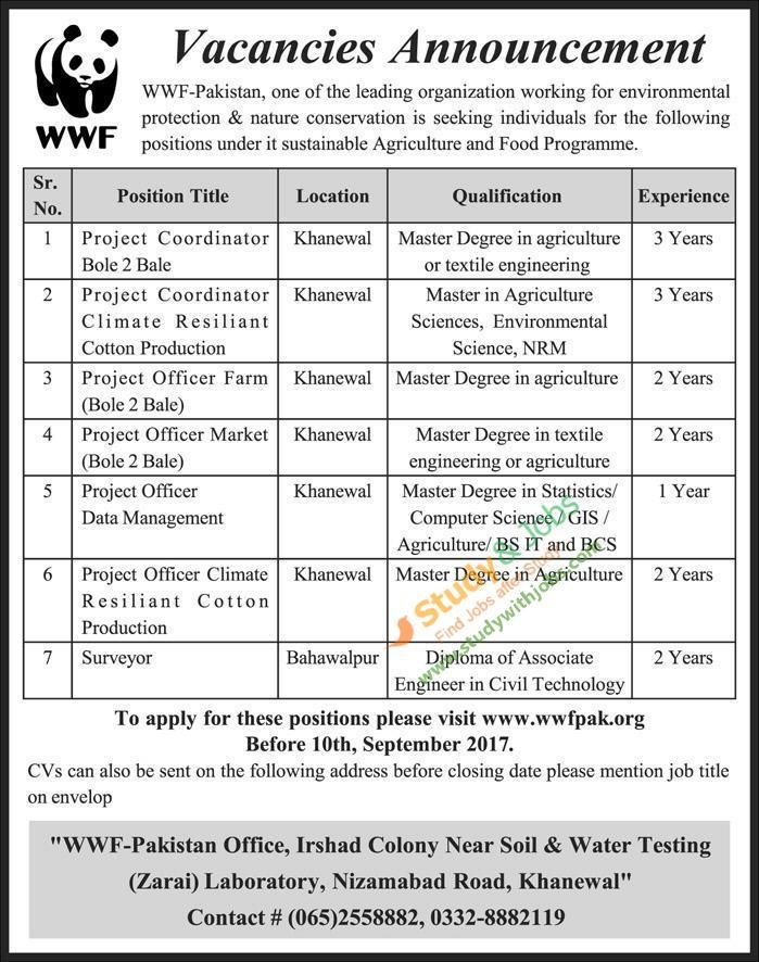 http\/\/ifttt\/2z4wPCk Jobs in Pakistan Pinterest Pakistan - 2 1 degree