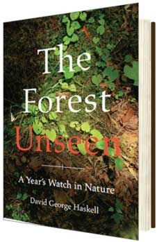 The Forest Unseen A Year S Watch In Nature Onearth Magazine Y Know You Can See The Forest For The Trees And In The Most Books Nonfiction Book Awards
