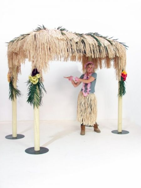 tropical canopy party ideas pinterest canopy halloween parties and party props