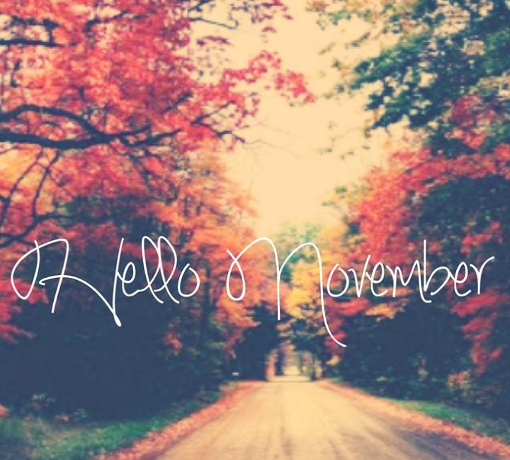 Exceptionnel Hello November