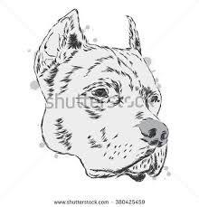 Resultado de imagen para simbolo pitbull