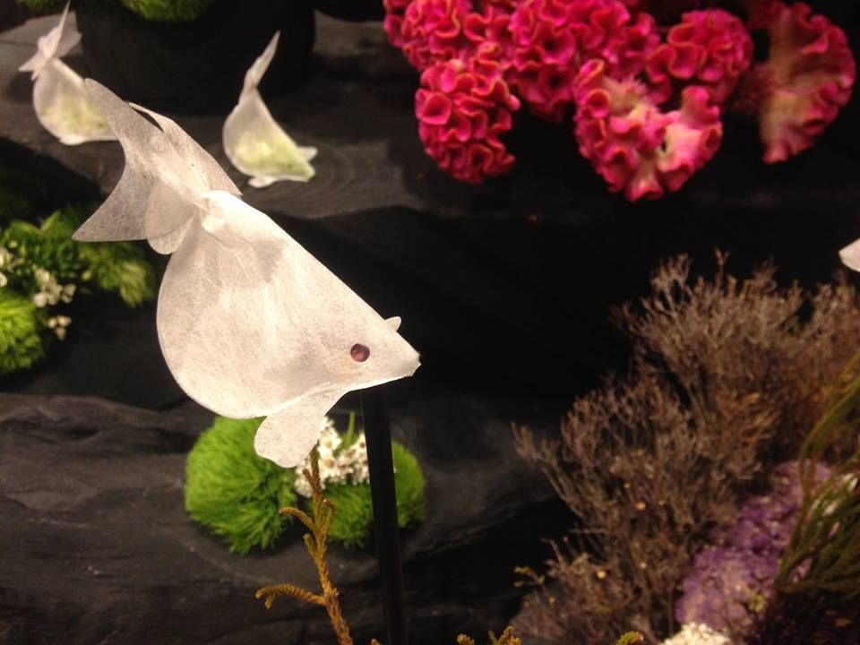 reserve your goldfish at creativiteabags.com