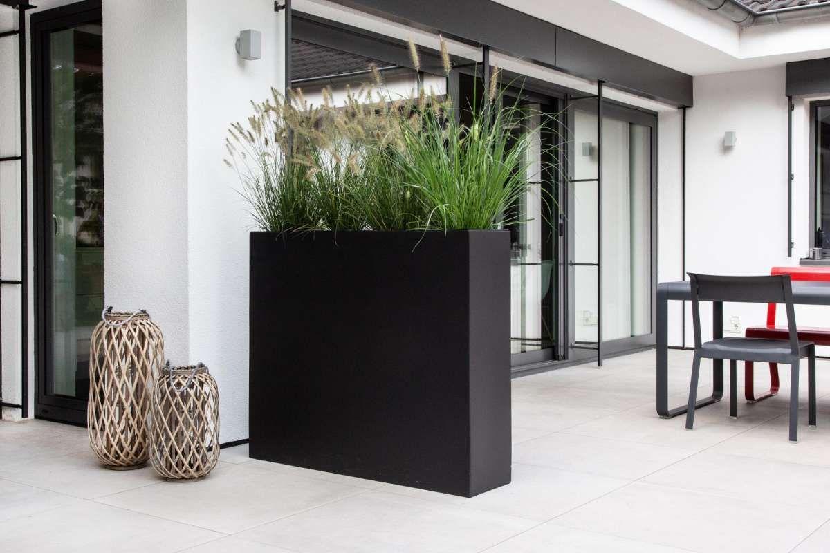 Pflanzkubel Raumteiler Mit Bildern Raumteiler Pflanzen