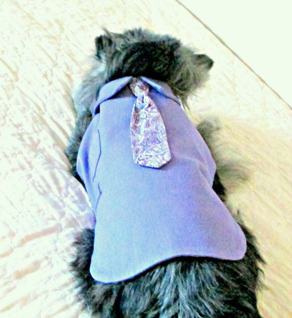 """Small Dog's """"Executive"""" Lavender Dress Shirt & Paisley Tie Made to Order Stretch Cotton Yorkie https://www.etsy.com/listing/101387326/small-dogs-executive-lavender-dress?ref=tre-2722421989-1"""