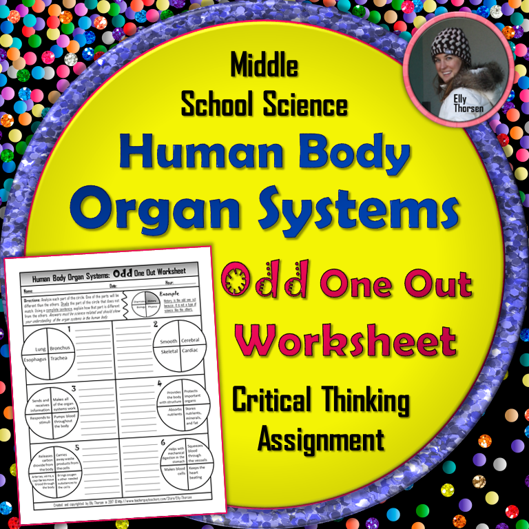 Human Body Systems Odd One Out Worksheet | Body systems ...