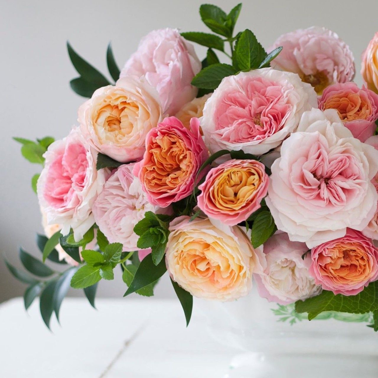 Rosa Loves Me Just A Little Bit More Mayra S Bridal Pink Princess Aiko Beloved And Princess Charlene Of Monaco The Various Rose Growing Roses Short Vase