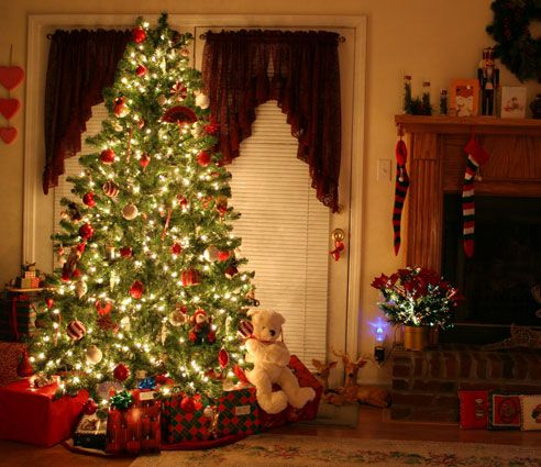 funny things your christmas tree says about youwhite lights you ask houseguests to remove their shoes
