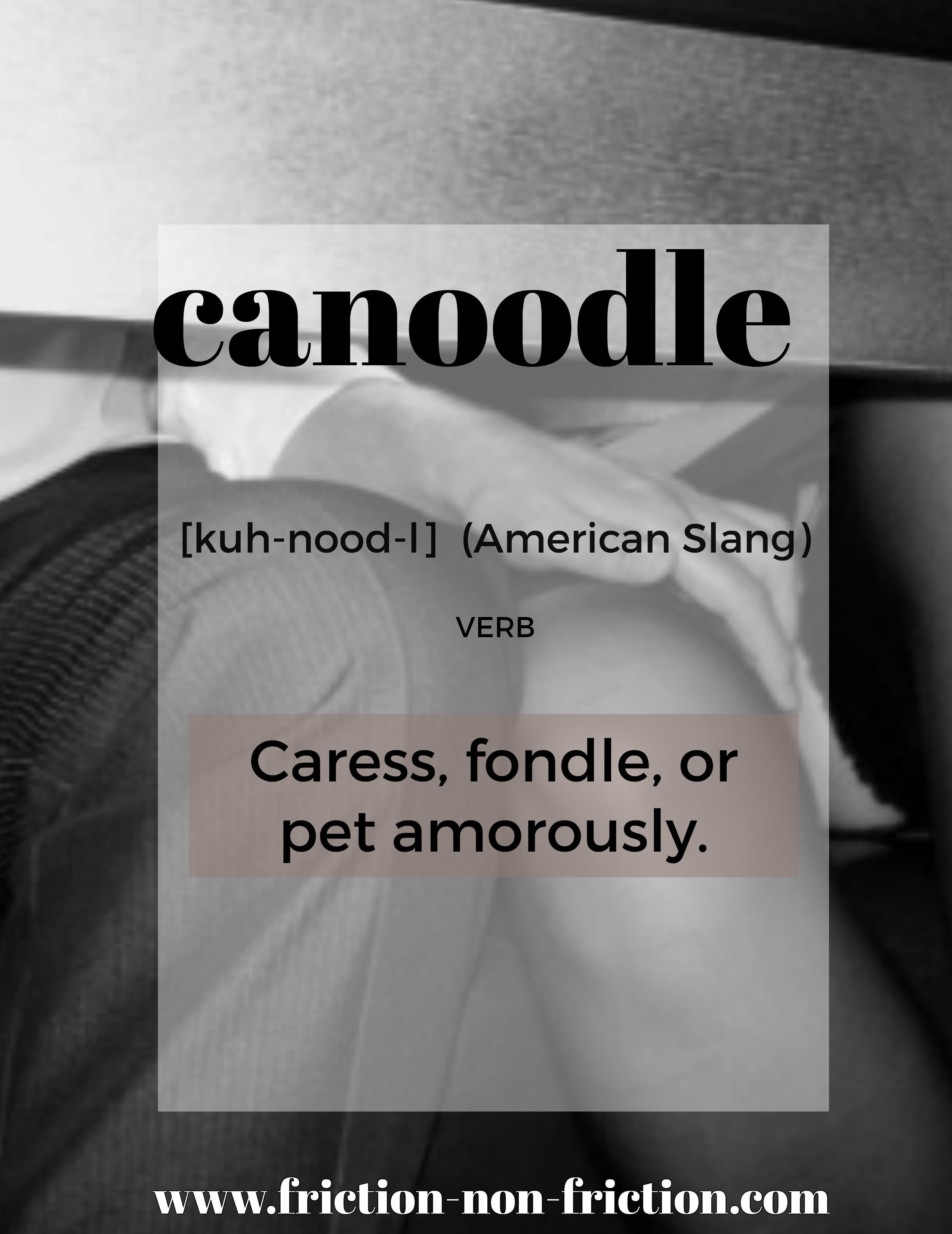 Amazing Canoodle    Another Great FRICTIONARY Definition From Friction|non|Friction