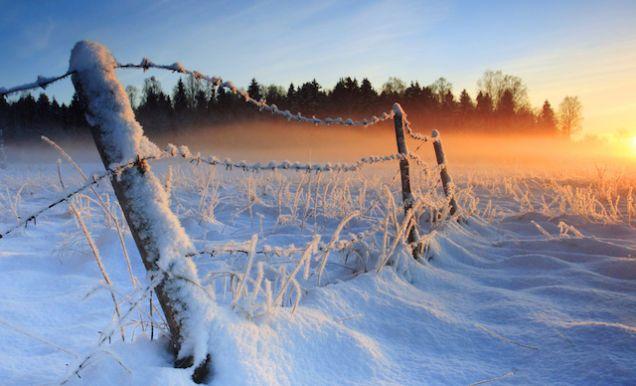 Lee Por qué sigue habiendo inviernos muy fríos pese al calentamiento global