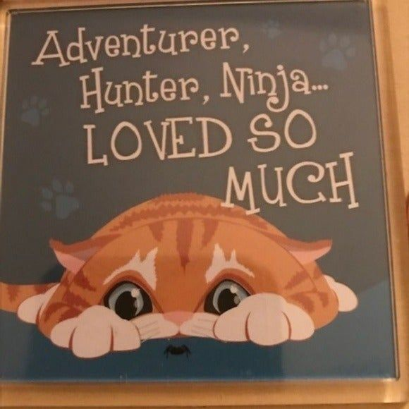Check out what Im selling on Mercari Adorable Ginger Cat Fridge Magnet